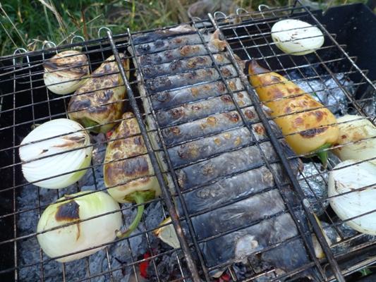 сом рецепты приготовления на гриле