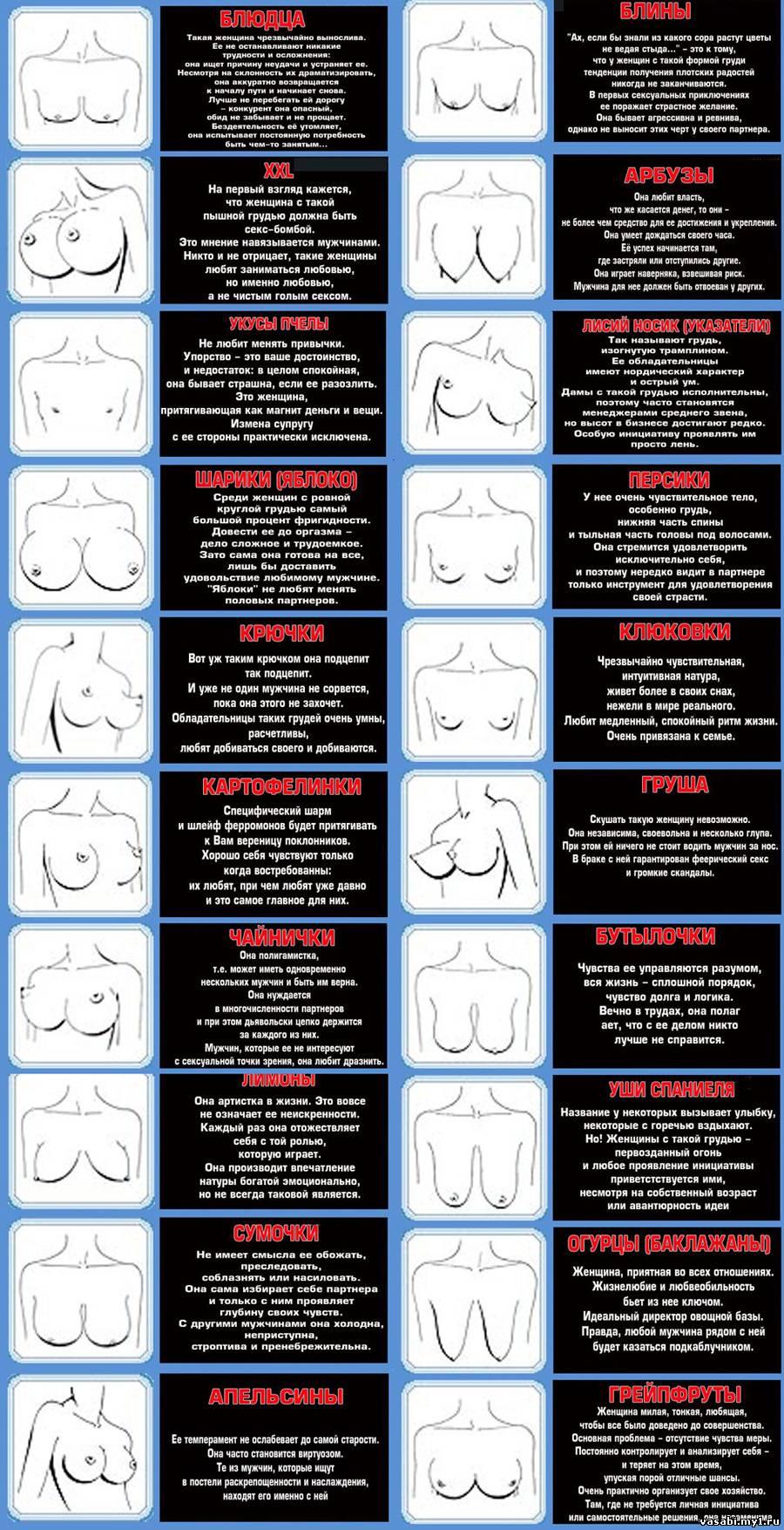 Разные формы женских грудей фото 13 фотография